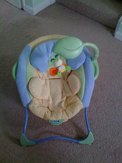 baby gear review fisher price baby papasan sofia gale s blog. Black Bedroom Furniture Sets. Home Design Ideas